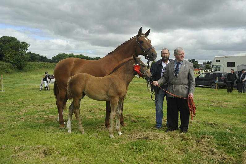 Athenry Agricultural Show